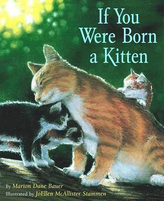 If You Were Born Kitten (Board) by Bauer