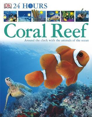 Coral Reef: Around the Clock with the Animals of the Ocean