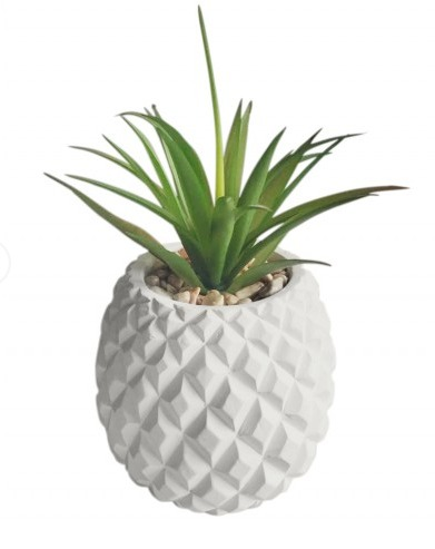 Rayell white cement pineapple pot plant at mighty ape nz for How to plant a pineapple top in a pot