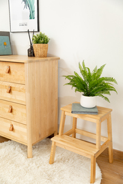 Fraser Country 2-Step Wood Stool - Light Birch Wood