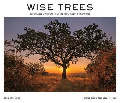 Wise Trees 2020 Wall Calendar by Diane Cook image