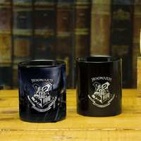 Hogwarts Heat Change Mug