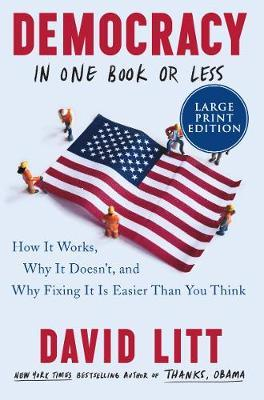 Democracy in One Book or Less by David Litt