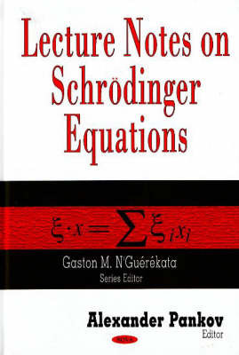 Lecture Notes on Schroedinger Equations