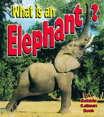 What is an Elephant? by John Crossingham