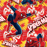 Spiderman School Book Covering (1M)