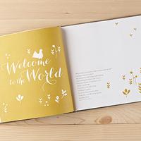 Welcome Baby Book (Boy) by Dan Zadra