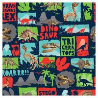 SKINZ: Book Coverings - Dinosaur