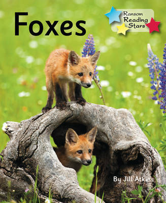 Foxes by Jill Atkins image