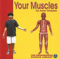 Your Muscles by Anne Ylvisaker