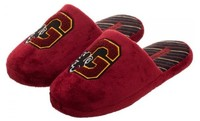 Harry Potter - Gryffindor Slide Slippers (Large)