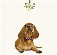 Art Marketing: Christmas Cards 6 Pk - Under The Mistletoe