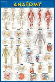Anatomy-Paper by BarCharts Inc