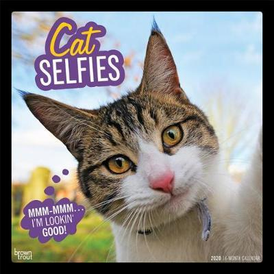 Cat Selfies 2020 Square Wall Calendar