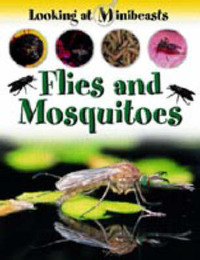 Flies and Mosquitoes by Sally Morgan image
