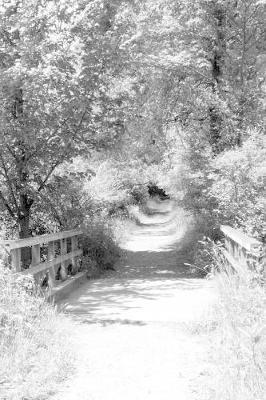 bridges by m montalbano