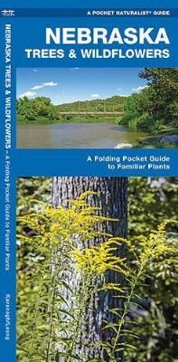 Nebraska Trees & Wildflowers : An Introduction to Familiar Species by Senior Consultant James Kavanagh (Senior Consultant, Oxera Oxera Oxera)