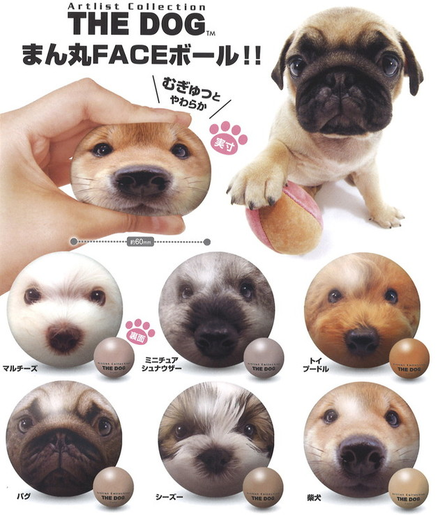 The Dog: Squishies Face Ball - Assorted Box