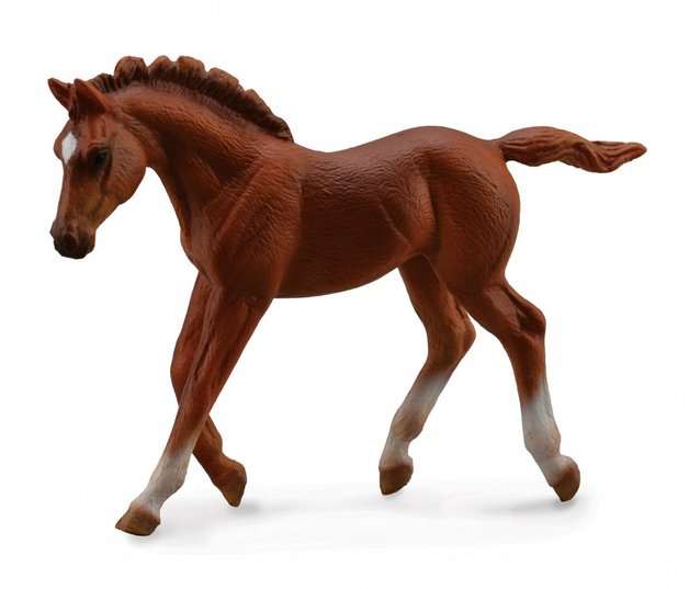 CollectA - Thoroughbred Foal (Walking/Chestnut)