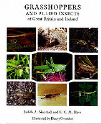 Grasshoppers and Allied Insects of Great Britain and Ireland by Judith Marshall image