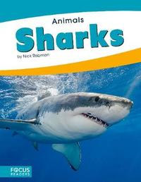 Sharks by Nick Rebman