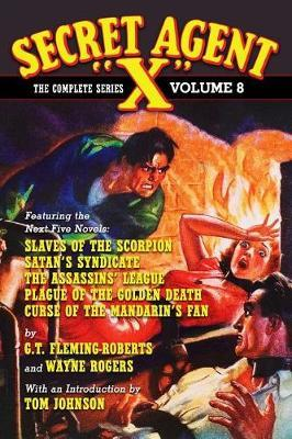 Secret Agent X by G.T. Fleming-Roberts image