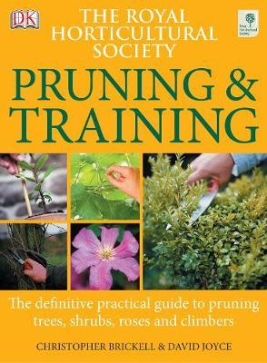 RHS Pruning and Training by David Joyce