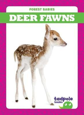 Deer Fawns by Genevieve Nilsen