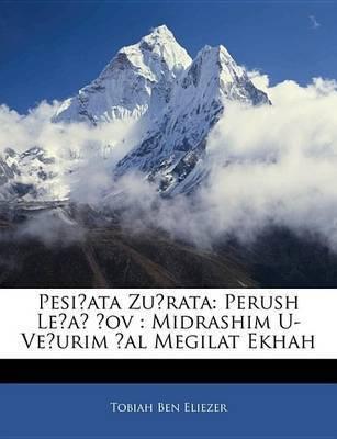 Pesiata Zurata: Perush Lea --Ov: Midrashim U-Veurim Al Megilat Ekhah by Tobiah Ben Eliezer