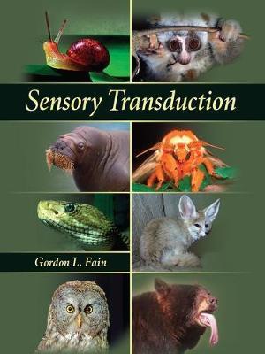 Sensory Transduction by Gordon L. Fain