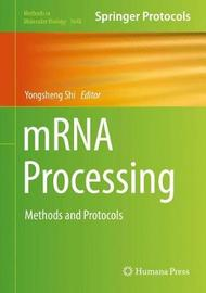 mRNA Processing image