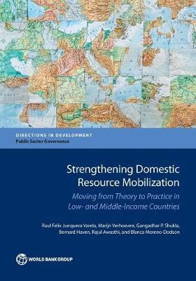 Strengthening domestic resource mobilization by Raul Junquera-Varela image