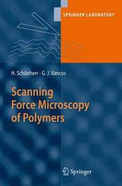 Scanning Force Microscopy of Polymers by G.Julius Vancso image