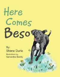 Here Comes Beso by Shane Durie