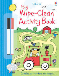 Big Wipe Clean Activity Book by Sam Taplin