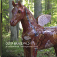 Outer Banks Wild: A Winged Horse Extravaganza Pictorial: v. 3 by Steve Alterman image