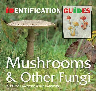 Mushrooms & Other Fungi by Sue Harniess image
