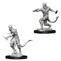 D&D Nolzur's Marvelous: Unpainted Miniatures - Tiefling Male Rogue