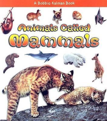 Animals Called Mammals by Kristina Lundblad