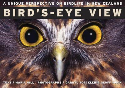 Bird's Eye View by Maria Gill