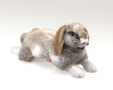 Folkmanis Hand Puppet - Holland Lop Rabbit