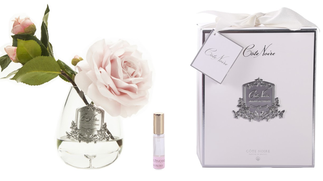 Cote Noire: Tea Rose French Pink - Clear