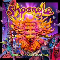 Museum of Consciousness (2LP+CD) by Shpongle