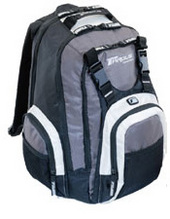 "Targus Rakgear Slam Backpack - Silver Up To 15.4"" Silver / Grey / Black"
