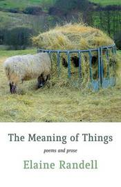 The Meaning of Things by Elaine Randell
