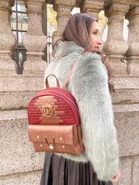 Danielle Nicole: Harry Potter: 9 3/4 Platform Backpack