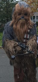 Star Wars Chewbacca Supreme Costume (XL) image