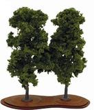 Mature Chestnut Trees x 2