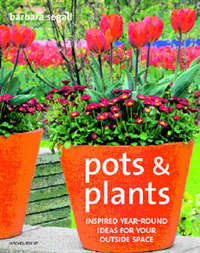 Pots and Plants by Barbara Segall image