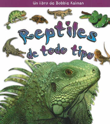 Reptiles de Todo Tipo (Reptiles of All Kinds) by Bobbie Kalman image